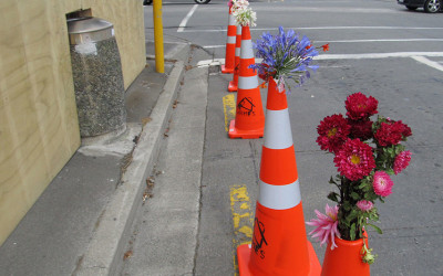 Road cone flowers